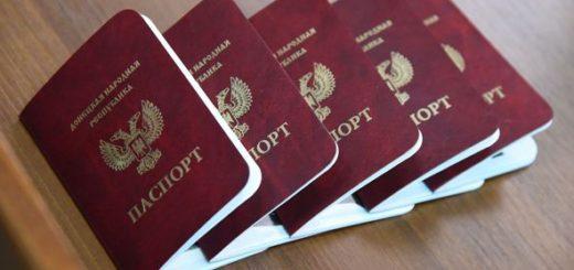pasport_dnr_m