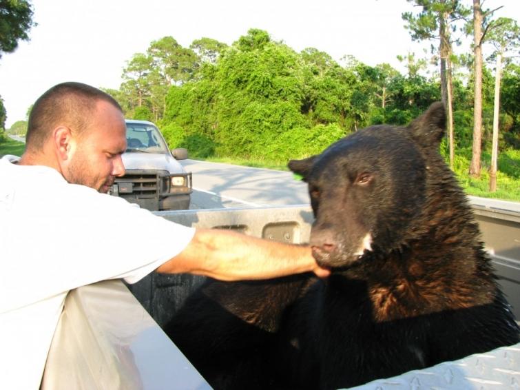 15-mujchina-spas-medvedya