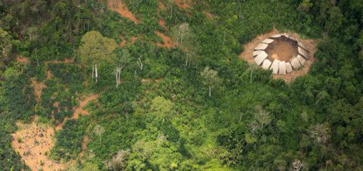 v-brazilii-najdeno-plemya-nikogda-ne-kontaktirovavshego-s-tsivilizatsiej-quibbll-6
