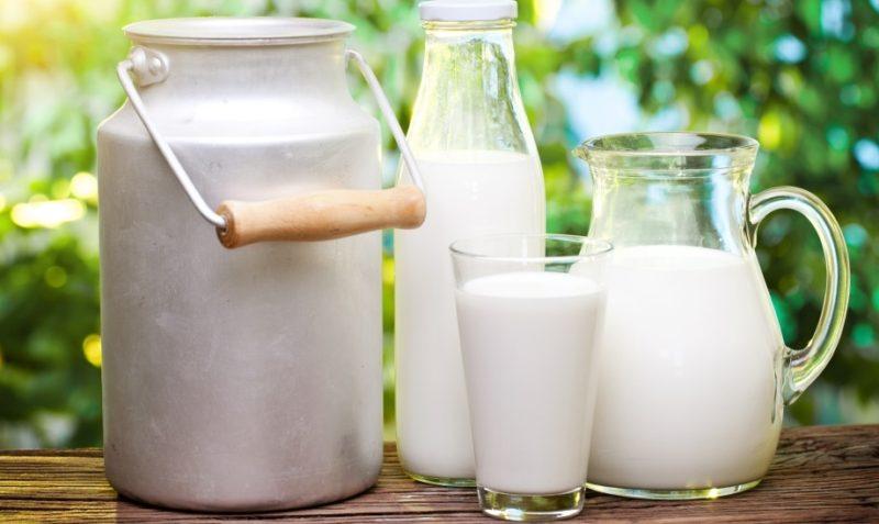 домашний йогурт из молока полезные свойства моменты, когда супруг